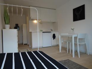 Volledig gerenoveerde, goed gelegen, bemeubelde studio binnen de ring van Leuven!De studio heeft een ruime leef-en slaapruimte met geïnstalleerde