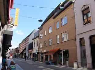 Ruim duplex-appartement met twee slaapkamers en autostaanplaats nabij station te Leuven!U komt meteen binnen in de living met geïnstalleerde keuk