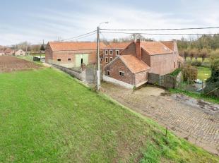 Zeer ruime hoeve (570 m²) met verschillende salons, 7 slaapkamers, 2 badkamers, 2 douchekamers, kelders, groot terras met zicht naar de tuin en w