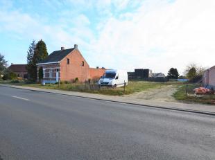 Terrain à vendre                     à 2200 Noorderwijk