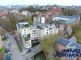 Beschikbaar op 01/09 - available on 01/09! Zeer rustig gelegen appartement unieke groene locatie in het centrum van Leuven. Winkels (lokale kleinhande