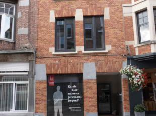 Leuven, Wandelingstraat 4 - Huurprijs 490/maand + Provisie 60/maand voor elektriciteit, internet, verwarming, koud & warm water, gemeenschappelijk