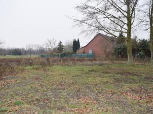 Deze bouwgrond is gelegen in de driehoek: Beerzel-Putte / Berlaar-Heikant / Heist-op den Berg.Bodemattest - verkavelingsvergunning - verkaveling voors