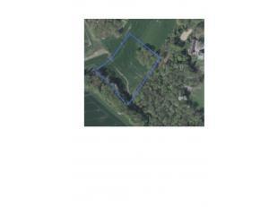 1ha 21 are 74 ca vrije grond, gelegen aan de Borrestraat te Tombeek (Overijse)<br /> Deze grond is onmiddellijk vrij na de akte.<br /> Ideaal als paar