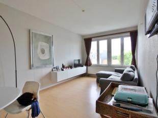 1 slaapkamer appartement in centrum Leuven, nabij Ladeuzeplein met halfopen ingerichte keuken, woonkamer (laminaatvloer) en ingerichte badkamer. Geleg