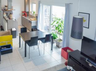 Dit recent en zeer energiezuinig duplex-appartement ligt op wandelafstand van het centrum van Gent. Het is instapklaar en bevindt zich op de tweede en
