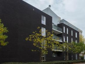 Toffe nieuwe lichtrijke studio in gebouw aan Marrainenplein. Dit plein is zeer rustig gelegen vlak aan het centrum van de stad en heeft tevens een vlo