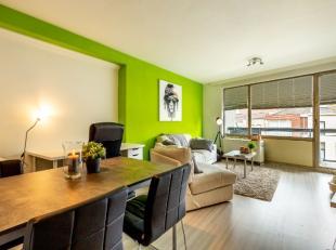 Dit lichtrijk appartement is centraal gelegen in het centrum van Leuven.U bent in de onmiddellijke nabijheid van winkels, tal van ontspanningsmogelijk