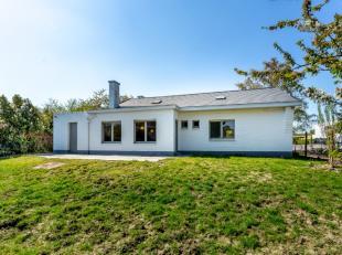 Nous trouvons cette villa de faible hauteur récemment rénovée dans la région rurale de Bierbeek. Cette maison lumineuse se