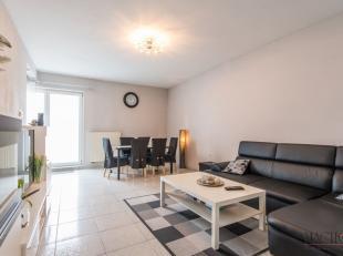 Dit appartement is midden in het centrum van Maasmechelen gelegen. Alle dagelijkse voorzieningen, waaronder scholen, winkels en het openbaar vervoer z
