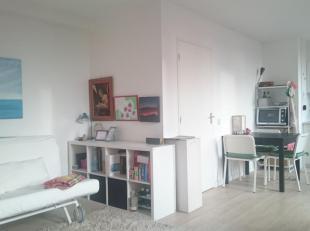 Een grote studio gelegen in het centrum van Leuven. Dichtbij UZ Leuven. De studio is gelegen op de bovenste verdieping met een groot terras dat uitzic