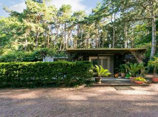 Uiterst rustig gelegen te renoveren woning grenzend aan natuurzone met grote aangelegde tuin en terrassen. Voor serre liefhebbers de ideale locatie om