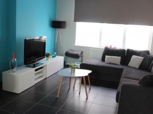Dit ruim gelijkvloers appartement (100 m²) is gelegen nabij de Spuikom.  Het bestaat uit een ruime, lichtrijke living, ingerichte keuken, badkame