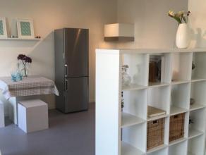 Studio in uitstekende staat in een rustige straat nabij Paardenmarkt en Italiëlei . 4de verdieping. Deels bemeubeld. Ideaal voor een student of s