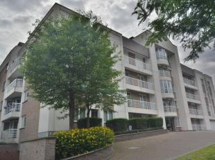 Gelegen vlakbij de europese scholen, vervoermiddelen en winkels: aangenaam appartement duplex met veel lichtinval gelegen op de 1ste en 2de verdieping
