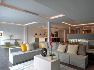 OPEN HUISDAG 6 mei 2018 van 11 tot 14 uur.Luxe appartement (290 m2) met polyvalente ruimte (150m2)Dit prachtige appartement in loft-stijl is afgewerkt