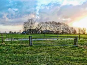 UNIEK AANBOD: Prachtige hoeve met bijgebouw en paardenstallingen in nieuwe staat, regio Brugge (+/- 5 km), gelegen te midden de Polders op een idyllis