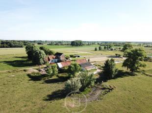 Droom je van een landelijk gelegen woning op slechts 4km van Brugge? Ontdek dan deze te renoveren hoeve op 10ha 90ca , met aanpalende stallingen. Er i