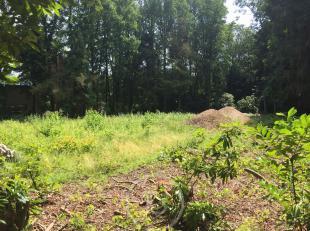 Residentieel gelegen stuk bouwgrond te Tillegem bos. Met straat breedte van 43,07m heeft dit perceel tal van troeven. het bouwen van een vrije stijl z