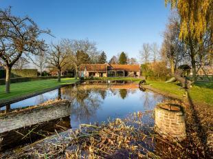 Maison à vendre                     à 8340 Moerkerke