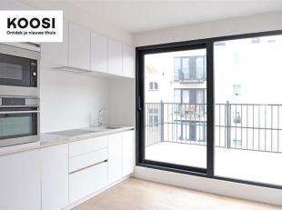 """Dit prachtige duplex appartement is gelegen in de Nassaustraat 31.    Deze penthouse bevindt zich in de bruisende buurt """"Het Eilandje"""" en op wandelafs"""