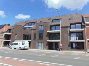 """De Residentie""""Augustijn"""" bevindt zich op een uitstekende locatie slechts enkele meters verwijderd van een bakker, slager, wassalon, warenhuis, school"""