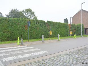 Terrain à vendre                     à 3800 Sint-Truiden