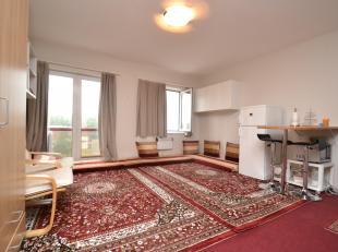 IMMO3000 Heeft deze lichtrijke studio op de ring van Leuven te koop. Naast een mooie open leefruimte, beschikt deze studio over een ingerichte kitchen