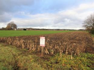 Landbouwgebied ter grootte van 27 a 75 ca, afmetingen: 19 m breedte bij 146 m Lengte.<br /> <br /> Gemakkelijk bereikbaar via de Achterheidestraat naa