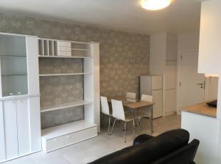 Volledig vernieuwde studio op de tweede verdieping, bewoonbare oppervlakte +/-34m² recht tegenover het Vlaams Administratief Centrum aan het stat