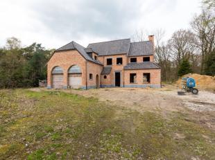 Een perfect afgewerkte' villa in ruwbouw/CASCO te Essen, Schaapsbaan 32a op +/- 1 ha grond, maar wel langs de spoorlijn Antwerpen-Roosendaal.Unieke ka