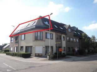 Appartement à vendre                     à 3545 Zelem