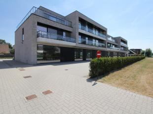 Op de N9 tussen Gent en Eeklo te Waarschoot ligt deze super gelegen handel, kantoor of praktijkruimte. Deze ruimte is 176m2 groot en wordt casco opgel