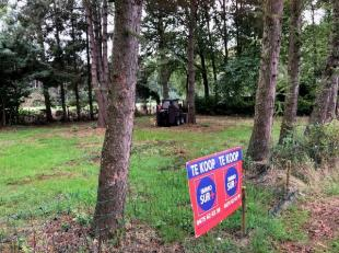 Interessant stukje bosgrond dat gelegen is in Wachtebeke. Eventueel om te vormen naar landbouwgrond.<br /> Wettelijke documenten te bekijken op www.im