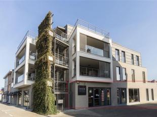 Instapklare commerciële ruimte (186 m² - zijkant van het gebouw) met gepolierde betonvloer, vloerverwaring, sanitair, alarm en 1 parkeerplaa