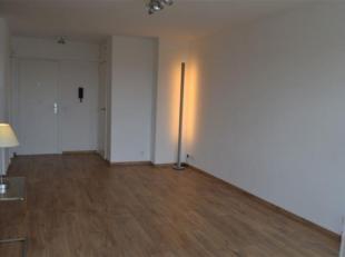 Bel appartement entièrement rénové, au cinquième étage avec terrasse, un living spacieux et une chambre à co