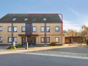 Prachtig en bijzonder goed onderhouden duplex appartement (2002) op zeer korte afstand van het centrum en de fiets- en wandelroutes richting kanaal. R