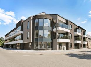 Appartement te koop                     in 3900 Overpelt