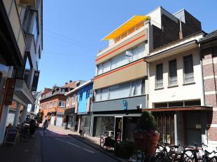 Gezellig en ruim appartement (97m2) met veel lichtinval middenin de hippe buurt van Hasselt met winkels, restaurants, scholen en het openbaar vervoer