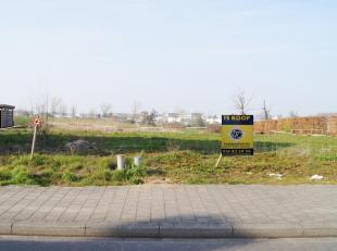 Terrain à vendre                     à 3300 Tienen