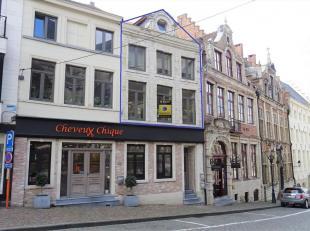 Zeer mooie moderne triplex gelegen pal in het centrum nabij Veemarkt, scholen, winkels en met vlotte verbinding autosnelweg, treinstation en bus. Het