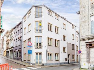 De 4 appartementen werden in 2010 gebouwd en klaargemaakt voor verhuring. Er is een inkomhal met plafondhoge kasten met nutsvoorzieningen, een fietsen