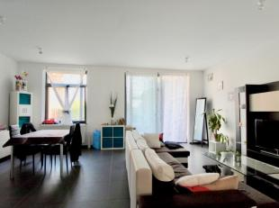 Appartement te huur                     in 7800 Ath