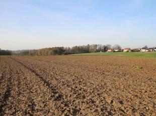 !!! OPTION EN COURS !!! Sur la commune de Limal (Wavre), à la limite avec Rixensart, nous vous proposons ce vaste terrain de près de 1,4
