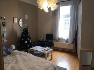 Molière/Brugmann, joli flat/studio entièrement rénové (pas de chambre séparée), Living avec parquet, cuisine