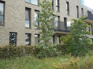 Dit gunstig gelegen appartement te Hasselt ligt op de 1ste verdieping en bestaat uit een inkomhal, living met open keuken, berging, badkamer, 2 slaapk
