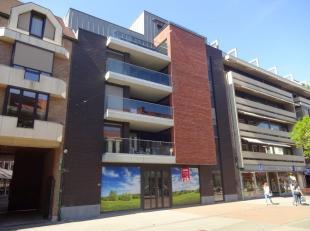 Vrij - te bezichtigen via kantoor.<br /> <br /> Nieuwbouwhandelspand in het centrum van Hasselt, 141 m², instapklaar, gelijkvloers, met aparte wc