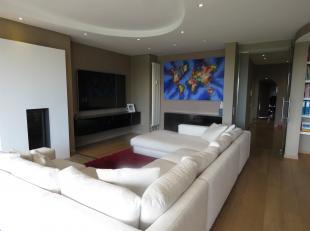 Luxueus modern ingericht duplex-appartement 7 & 8e verdieping op residentiële toplocatie met zicht op het Stadspark en op wandelafstand van D