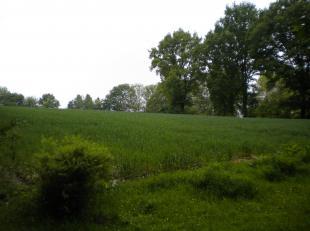 Réf. : 18BU-BV-AG<br /> PROVINCE DE LIEGE - BRAIVES (9km au sud-est de Hannut) : Terrain batissable en zone rurale (Ref. 18BU-BV-AG)<br /> &amp