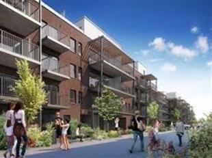 ANTWERPEN: Nieuw gebouw met 13 studentenkoten (Ref. 18KS-AN)<br />  De bouw zal opgeleverd worden in 6 maanden<br />  Op 200m gelegen van de Universit